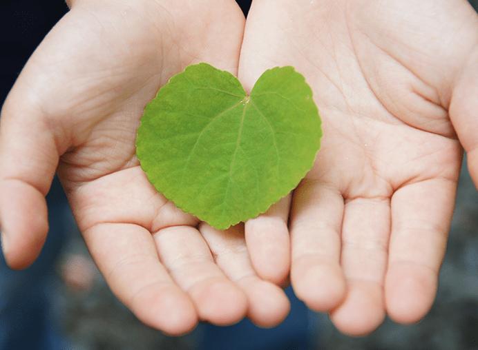 確実な成長は、「心の健康」という土台から。